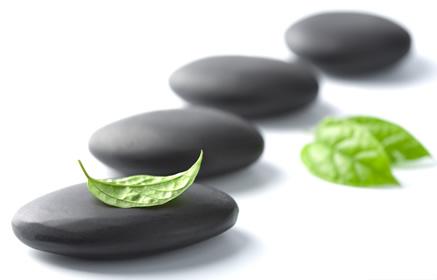 Mindfulness para Profissionais de Saúde